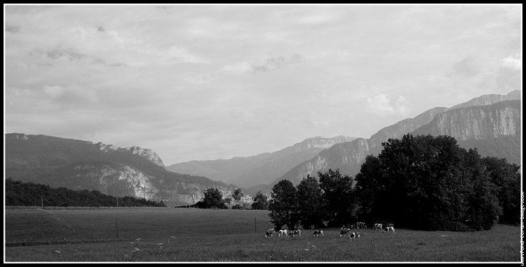 photo photo paysage montagne noir et blanc