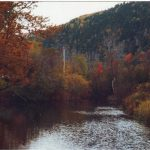 de paysage d'automne au canada