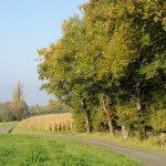 Image d'un paysage de campagne