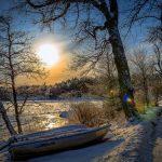 Image paysage gelé