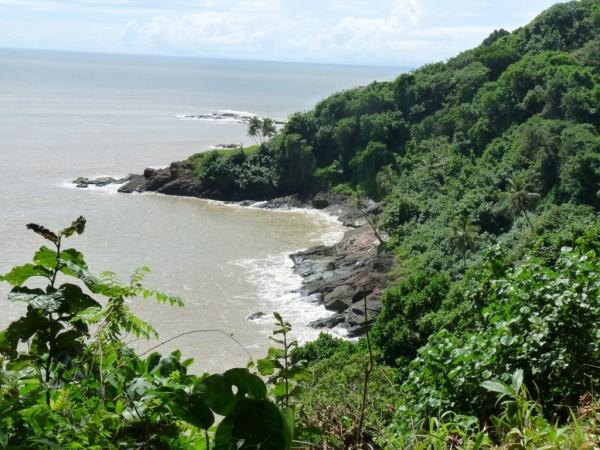 photo image paysage guyane