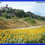 Image paysage latex