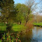 Image paysage printemps