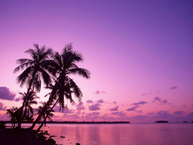 photo image paysage tropical