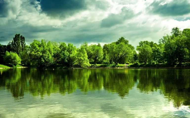 photo image paysage vert
