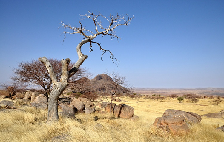 photo paysage d'afrique