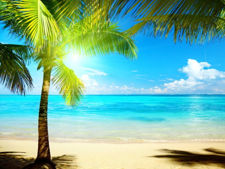 photo photo paysage tropical