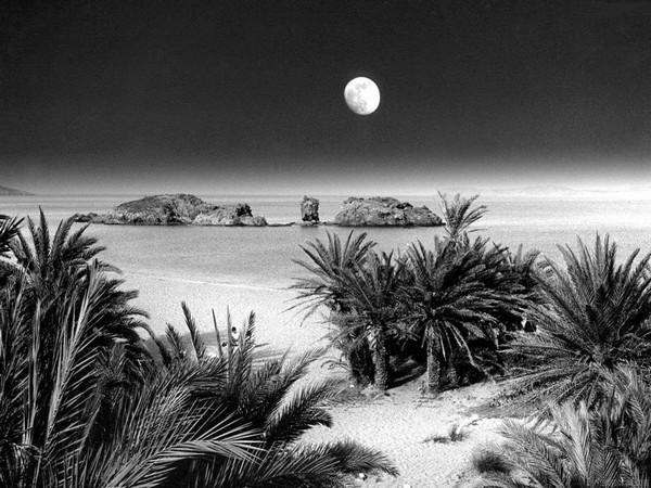 photo image paysage noir et blanc