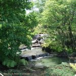 Image paysage jardin