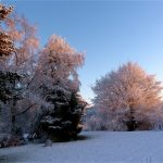 Image paysage sous la neige