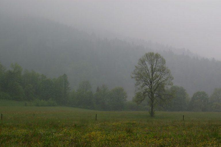 photo image paysage sous la pluie