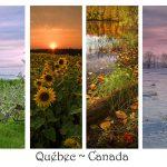paysage 4 saisons