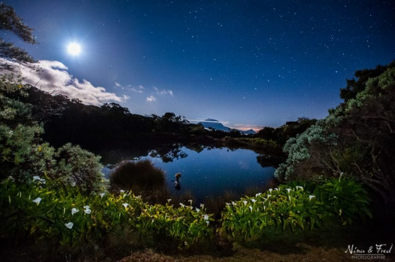 photo photo paysage étoilé