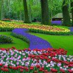 paysage hollande