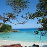 Paysage jamaique