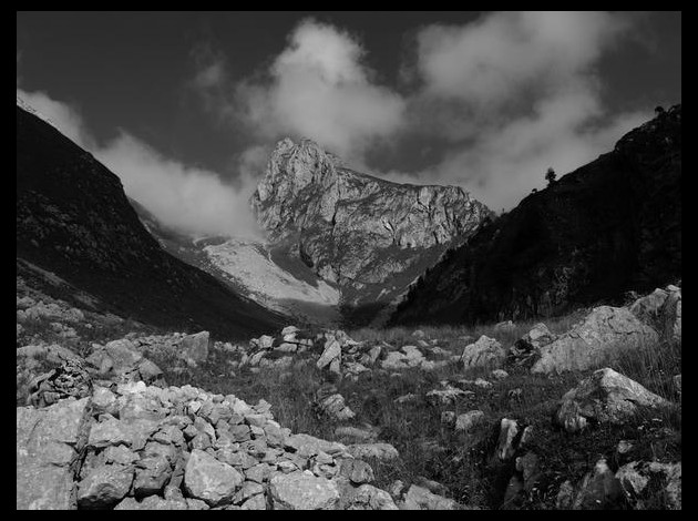 photo photo paysage lugubre