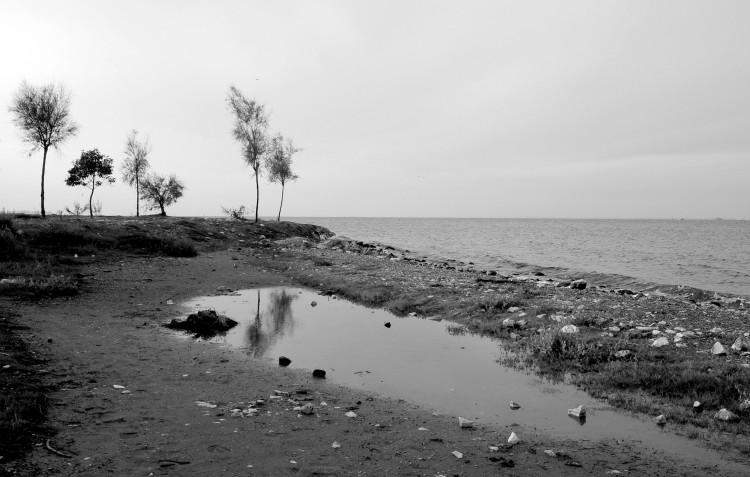 photo photo paysage triste