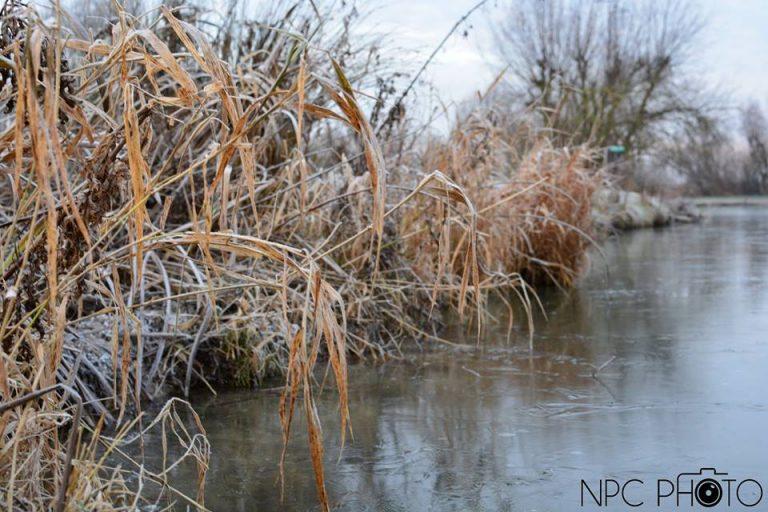 photo paysage gelé