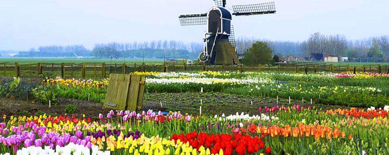 photo photo paysage hollande