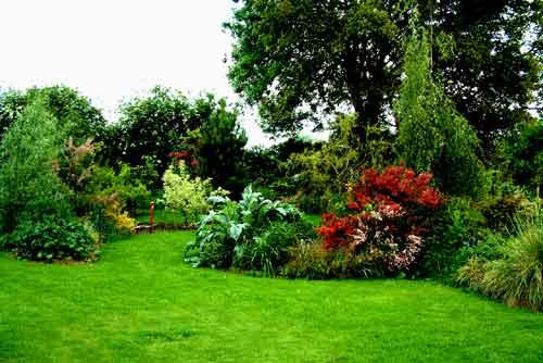photo image paysage jardin