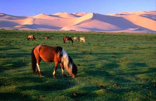 photo photo paysage mongolie