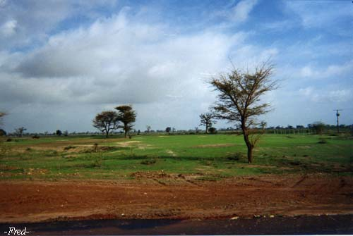 photo photo paysage senegal