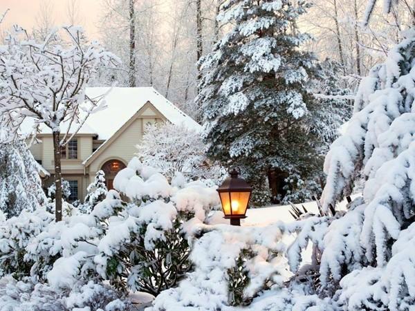 photo image paysage sous la neige