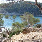 Image paysage bord de mer