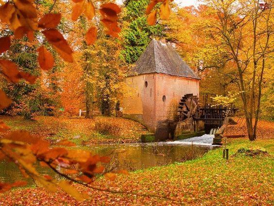 photo image paysage d'automne