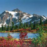 Image paysage naturel