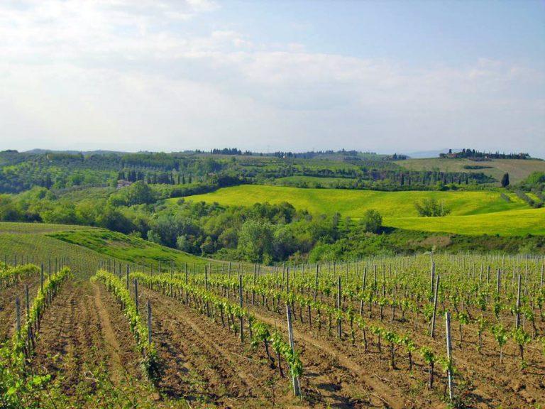 photo image paysage toscane