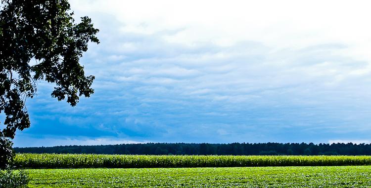 photo paysage bleu