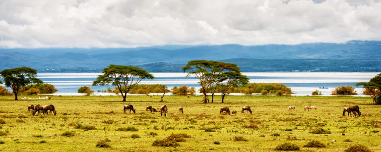 photo paysage kenya