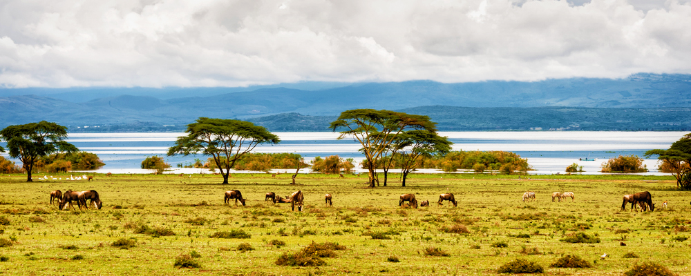 kenya-paysage - Photo