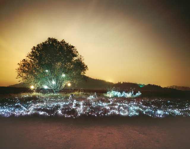 photo photo paysage lumineux