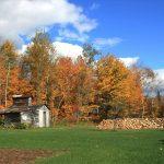 Paysage quebec automne