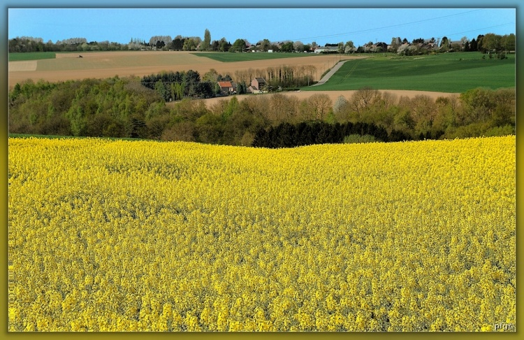 photo photo paysage agricole