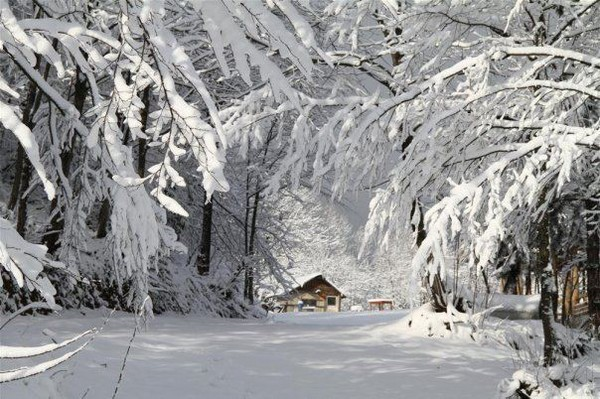 photo paysage hivernal