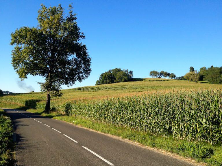 photo photo paysage iphone