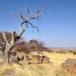 Image paysage afrique