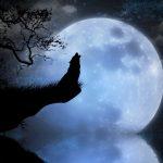 Image paysage lune