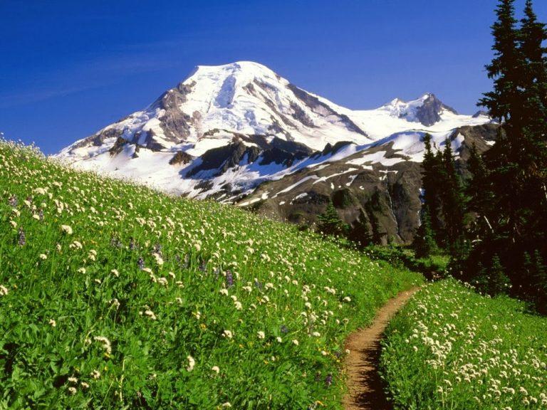 photo image paysage montagne