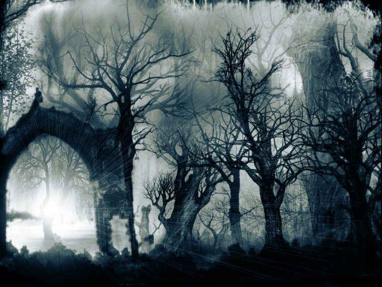 photo image paysage sombre