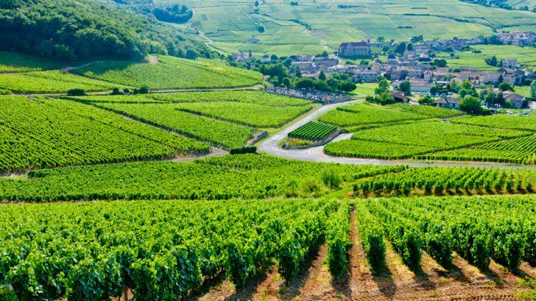photo photo paysage bourgogne