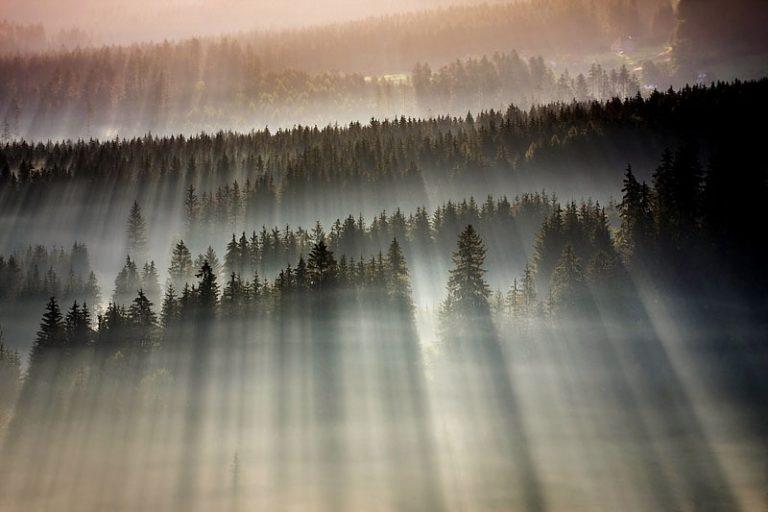 photo photo paysage ensoleillé