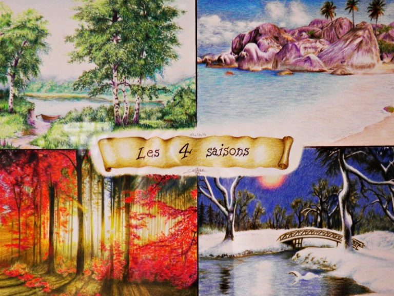 photo photo paysage quatre saisons