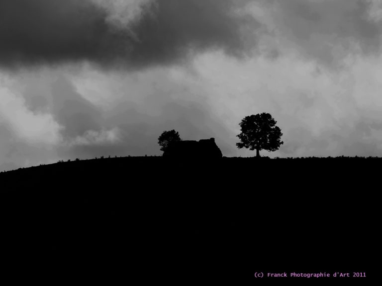 photo photo d'art paysage
