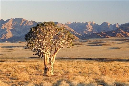 photo image paysage afrique