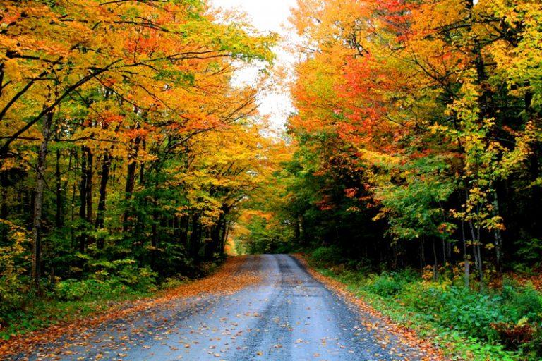 photo photo paysage automne québec
