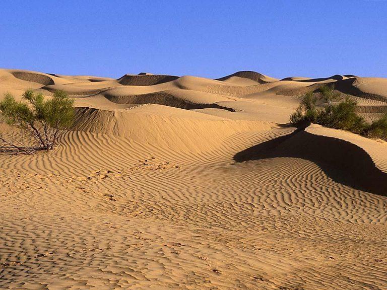 photo photo paysage desert